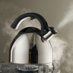 Which kettles are the most powerful?